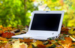 White Laptop in an automn scene
