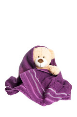 Teddy wrapped in a towel