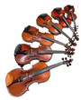 six sizes of violins