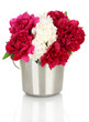 beautiful pink and white peonies in bucket isolated on white