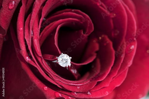 Diamond Ring in a red rose