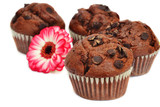 Four  chocolate muffins and flower