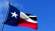 Texas State Flag Fluttering On Blue Sky HDTV