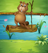 A beaver holding a wood in the river