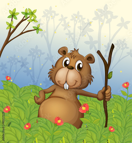 A beaver holding a wood in the jungle