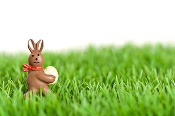 Osterhase im Gras