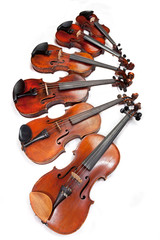 different sized fiddles