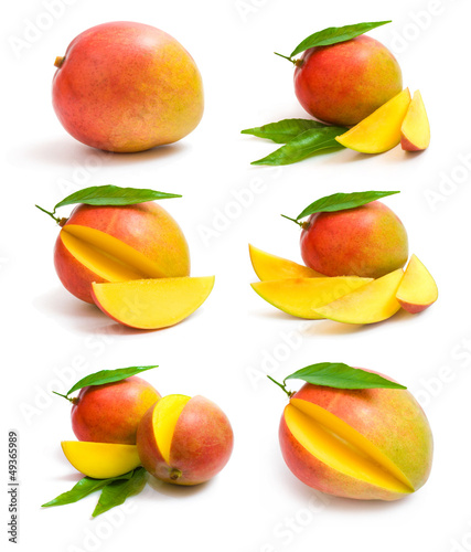 mango collection