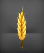 Wheat, icon