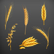 Wheat set