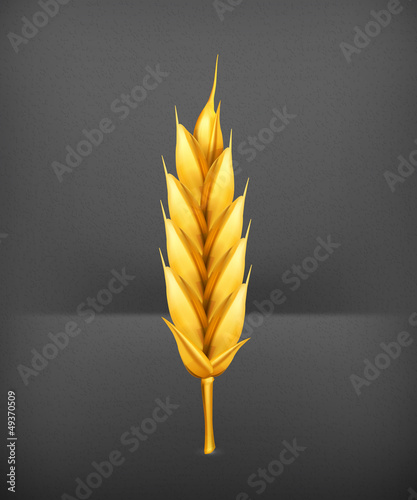 Wheat, icon