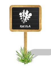 Rucola Schildchen Vektor