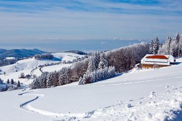 Winter, Schnee, Frost, Wald, HimmelHaus, Hotel, Fernblick