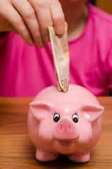 Rosa Sparschwein mit Euroschein