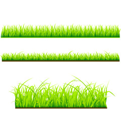 set of 3 different grass types