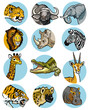icons with wild animals of africa