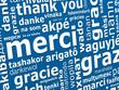 Erasmus - langues étrangères - Merci