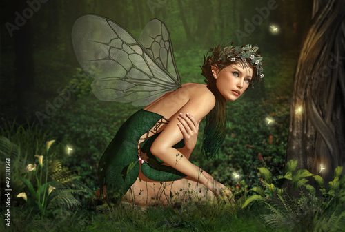 Spoed canvasdoek 2cm dik Retro In the Fairy Forest