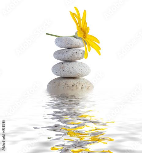 Fototapeta zen spa stones with flower