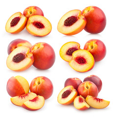 collection of nectarines images