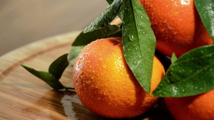 Rotating Tangerines with fresh leaves (time lapse)