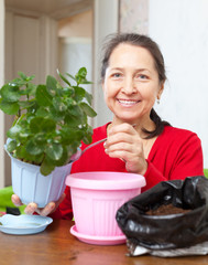 Mature woman transplants potted flower