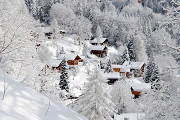 Barboleuse (Suisse)