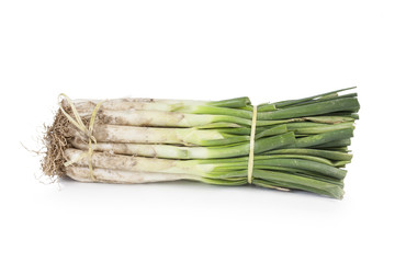 Bunch of uncooked fresh calçots
