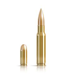 Ammunition bullets on white