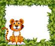 A tiger sitting in a leafy frame