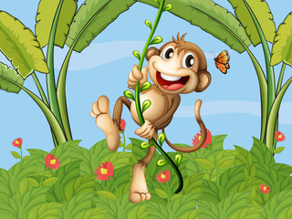 A hanging monkey