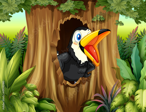 A bird in a tree hollow