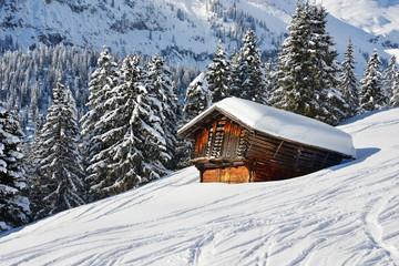 Ski- und Snowboardspuren im Tiefschnee