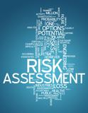 "Word Cloud ""Risk Assessment"""