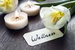 Wellness Schild mit Tulpen