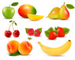 Big set of different fresh fruit and berries. Vector.