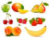 Fototapety Big set of different fresh fruit and berries. Vector.