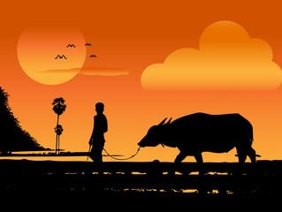 Farmer Pulling Buffalo