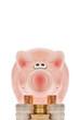 Rosa Sparschwein und Euromünzen - Pink piggy bank and euro coin