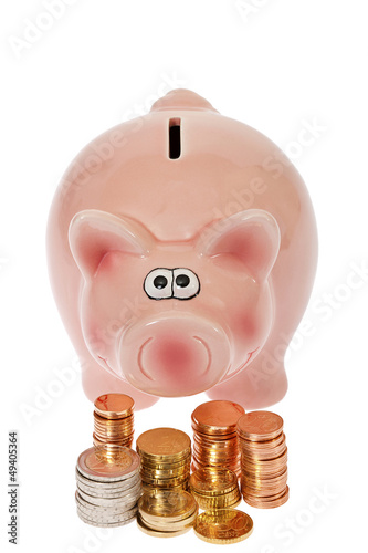 canvas print picture Rosa Sparschwein und Euromünzen - Pink piggy bank and euro coin