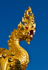 Golden dragon statue isolated on blue background