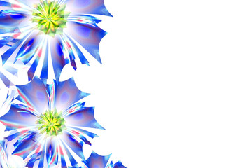 Flower background. Blue palette. Computer generated graphics.