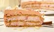 Piece of pink creamy fruit cake