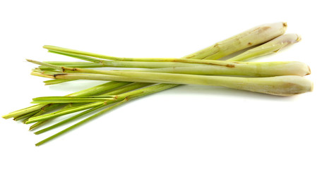 lemon grass isolated on white background