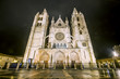 Night shot of the Cathedral of Leon in a foggy day, Castilla y L