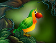 A parrot at the rain forest