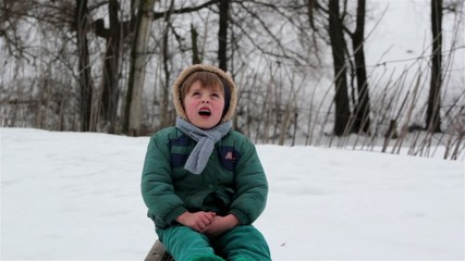 portrait of country boy on a sled