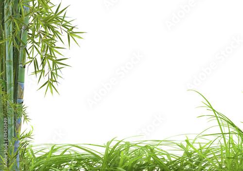 Fototapeten,bambus,zen,sätze,massage