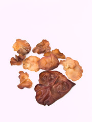 Auricularia auricula isolated on whith background