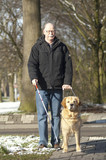 Guide dog is helping a blind man in traffic